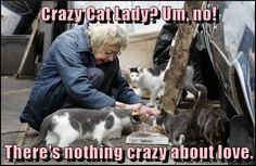 Crazy Cat Lady? Um, no!  There's nothing crazy about love.