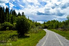 One of Cochrane's many scenic pathways Pathways, Beautiful Pictures, Landscapes, Country Roads, Explore, Artwork, Nature, Paisajes, Work Of Art