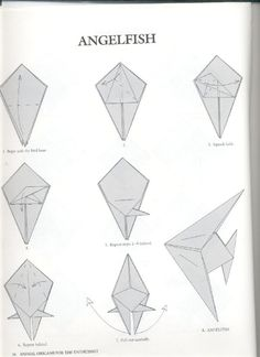 Fontes / Sources:  Livro / Book: Animal Origami for Enthusiast - John Montroll  http://jesspages.net/makingstu...
