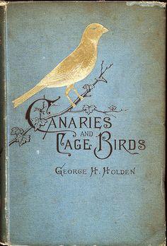 Les carnets de miss clara   demoisellemarie: for bookworms, #blue books# old...