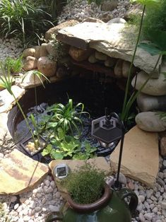 The 35 Gallon Patio Pond is made from durable plastic and can be used above or in-ground. It got flat bottom for stable plant and pump placement. It is very safe for fish and plants. Patio Pond, Backyard Pool Landscaping, Ponds Backyard, Landscaping With Rocks, Landscaping Ideas, Corner Landscaping, Backyard Waterfalls, Diy Pond, Backyard Ideas