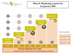 Plan Marketing de Forever Living Products