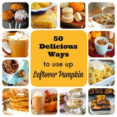 50 Ways to Use Up Leftover Pumpkin, from 1 tablespoon to 2 cups!