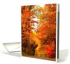 Autumn, Foliage, Leaves, Happy Thanksgiving card (507096) by Inspired by Louise