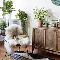 Sideboard and plants...