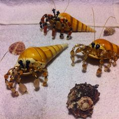 Beaded hermit crabs Hand made by Stephanie Welch