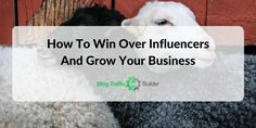 how-to-win-over-influencers-and-grow-your-business Growing Your Business, Blogging, Paradise, Heaven