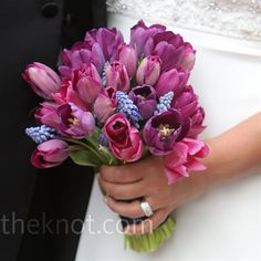 Tulips is what I would like but not the pink and blue just the purple white and red