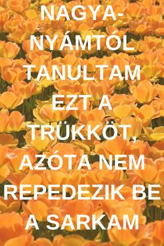 Nagyanyámtól tanultam ezt a trükköt, azóta nem repedezik be a sarkam Natural Cures, The Cure, Remedies, Nature, Artwork, Creative, Naturaleza, Work Of Art, Auguste Rodin Artwork