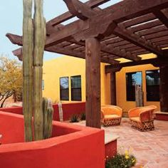 Arizona home takes flight with color in the entry courtyard.