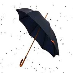Send Folding Umbrella for Men as Gifts to India ( Delivery within 2-4 working days) - images are indicative in nature and actual product color and design may vary keeping the best quality possible.