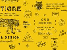 Le Tigre by Bethany Heck #branding #design