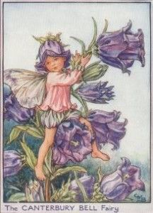 Little Miss Canterbury Fairy (1) From: A TypicaLife, please visit