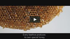 To showcase Darbo's locally-sourced honey, we let Austrian bees create the first-ever organic labels for honey jars using their own beeswax. We developed special…