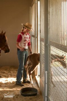 At two days old, Rev ventures into the big world outside of his stall. The first 10 days of a foal's life are critical for shaping him into a super learner! In as few as 7 handling sessions, you can teach your foal   essential life skills. www.horseeducation.com