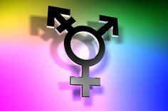 Trans Lives And Info