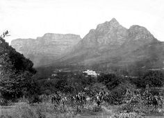 Rosebank, Cape Town 1895 | Flickr - Photo Sharing! Old Pictures, Old Photos, Vintage Photos, Cape Town South Africa, Olympic Peninsula, Most Beautiful Cities, Whale Watching, Historical Pictures, African History