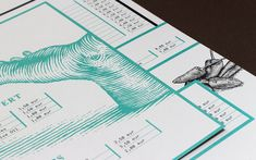 Another Collective on Behance