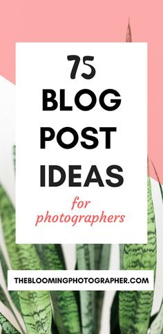 54 Ideas For Photography Ideas For Beginners Portraits Posts – Photography, Landscape photography, Photography tips Hobby Photography, Photography Website, Photography Business, Photography Tutorials, Photography Ideas, Photography Articles, Photography Classes, Iphone Photography, Photography Backdrops