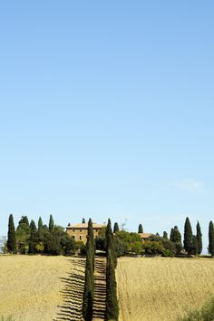 Tuscany, with its avenues of Cyprus trees and golden wheat fields, deserves its reputation of a dreamy vacation spot. Here are the most beautiful Airbnb villas to rent this summer. Italian Home Decor, Rustic Italian, Tuscan Design, Tuscan Style, Beautiful Villas, Most Beautiful Beaches, Wall Garden Indoor, Indoor Gardening, Balcony Garden