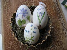Gänseeier mit einem handgemaltem Blumenmotiv. Jedes Ei wird nach der Bemalung mit Klarlack überzogen und erhält ein Organzabändchen zum aufhänge...