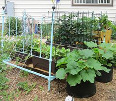 """Make a raised bed from an old bed frame: Gardener's Journal ... Now this changes the meaning of  a """"raised bed""""   :)"""