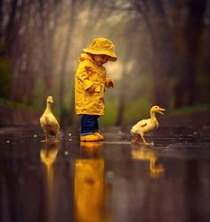 Post with 1904 votes and 96265 views. Tagged with cute, nature, amazing, beautiful, rain; Enjoying rainy day together Animals And Pets, Baby Animals, Cute Animals, Nature Animals, Wild Animals, Children Photography, Art Photography, Yellow Photography, Little Boy Photography