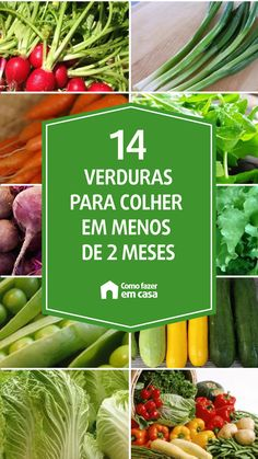 14 Verduras para plantar e colher em menos de 2 meses | Cabbage, Diaries, Flowers, Journal, Mushy Peas, Healthy Green Smoothies, Chopped Salads, Raised Vegetable Gardens, Green Beans