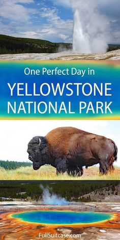 How to spend one day in Yellowstone National Park. See the best places with this one day itinerary for Yellowstone. Find out! American National Parks, National Parks Map, Grand Teton National Park, Yellowstone National Park, Yellowstone Map, Travel Usa, Alaska Travel, Alaska Cruise, Cool Places To Visit