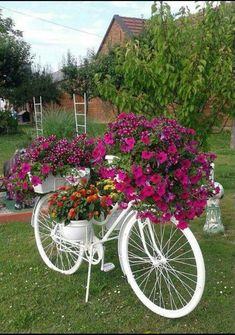 Bici florero
