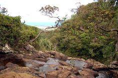 Die Alexandra Wasserfälle bieten einen spektakulären Panoramablick und liegen im Süden von Mauritius.
