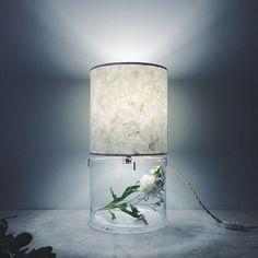 luminaria-mesa-terrario
