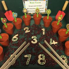 EYFS Busy fingers - bean count