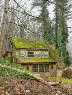 As if it grew from the hillside, this charming stone cottage amidst the wooded glen.