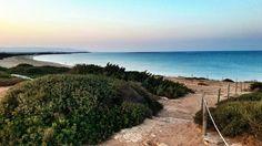 Natural reserve of Vendicari, Sicily south east