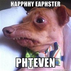 "Happhhy Eaphster Phteven | Tuna, the ""Phteven"" dog"