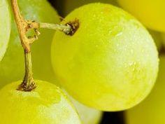 Las uvas, potente depurativo y afrodisiaco | Gaceta Tecnologica