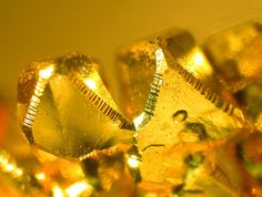 Gold  Locality: Eagle's Nest Mine (Mystery Wind Mine), Placer Co., California, USA  Portal #2. Sharp, brilliant, modified octahedrons. Field of view 4 mm. Robert Meyer specimen and photo.  This Photo was Mindat.org Photo of the Day - 16th Mar 2006.     via Josee Honeyball