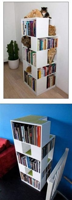 Cool cat tree book case