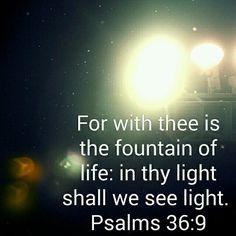 Bask in God's Light. Via Bible App