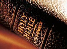 bible - Think Atheist Tb Joshua, Bible Humor, Biblia Online, Bible Text, Inspirational Verses, Heart And Mind, Atheism, Word Of God, Bible Verses