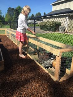Raising chickens in your backyard or garden is a great idea to get the freshest eggs and healthy meat. It seems to be a good idea to allow chickens to Backyard Chicken Coop Plans, Chicken Coop Run, Chicken Coup, Chicken Garden, Building A Chicken Coop, Chicken Feed, Chicken Runs, Chickens Backyard, Chicken Coop Pallets