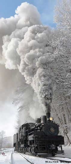 Cass Scenic Railroad, WV!! My family and I have rode that rain a bunch of times.