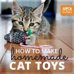 How To Make Homemade Cat Toys