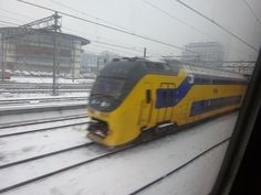 NS in snow 11 Feb.2017