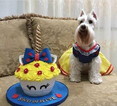 25 Photos of Dogs Dressed As Disney Characters, Because You Deserve It