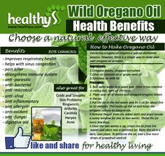 Do you know the health benefits of oregano oil?