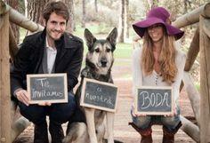 novios con perro invitacion boda
