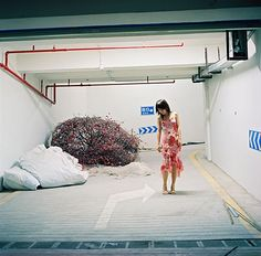 Yang Yong   msuphotoresources