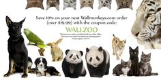 Save 10% on most Wallmonkeys.com orders over 19.99 with the coupon code WALLZOO!